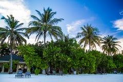 Spiaggia tropicale sabbiosa bianca in Maldive Fotografia Stock