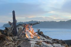 Spiaggia tropicale segreta nell'oceano Pacifico fotografia stock libera da diritti
