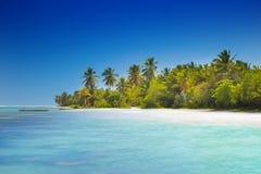 Spiaggia tropicale selvaggia Fotografia Stock Libera da Diritti