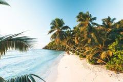 Spiaggia tropicale in Seychelles Fotografie Stock