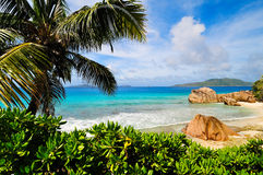 Spiaggia tropicale soleggiata Immagini Stock Libere da Diritti