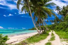 Spiaggia tropicale sull'isola dei Samoa con le palme e la strada Fotografia Stock Libera da Diritti