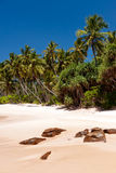 Spiaggia tropicale sulla Sri Lanka Fotografia Stock Libera da Diritti