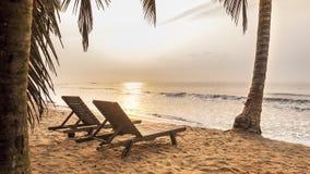 Spiaggia in tropici durante l'alba video d archivio