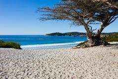 Spiaggia un giorno pieno di sole Fotografia Stock
