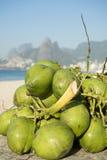 Spiaggia verde Rio de Janeiro Brazil di Ipanema delle noci di cocco Immagini Stock