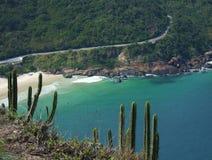 Spiaggia vicino ad una foresta tropicale fotografia stock