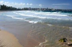 Spiaggia virile sydney Il Nuovo Galles del Sud l'australia Fotografie Stock Libere da Diritti