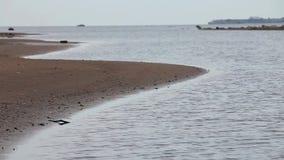 Spiaggia vuota in autunno archivi video
