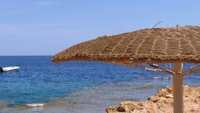 Spiaggia vuota con gli ombrelli nell'Egitto sui precedenti di un mare di Coral Reef in rosso archivi video