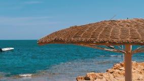 Spiaggia vuota con gli ombrelli nell'Egitto sui precedenti di un mare di Coral Reef in rosso stock footage