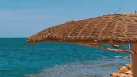 Spiaggia vuota con gli ombrelli nell'Egitto sui precedenti di un mare di Coral Reef in rosso video d archivio