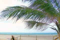 Spiaggia vuota di mattina Fotografia Stock Libera da Diritti