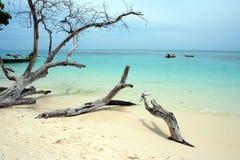 Spiaggia XIX di Andaman Fotografie Stock Libere da Diritti