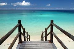 Spiaggia a Zanzibar Immagini Stock Libere da Diritti
