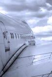 Spiani il volo Fotografia Stock
