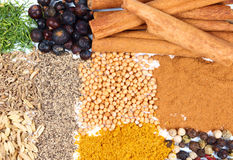 Spice. Macro photo of spices collection Royalty Free Stock Photos
