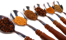 Spice. Macro photo of collection of spices on spoons isolated on white stock images