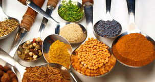 Spice. Macro photo of collection of spices on spoons isolated on white Stock Photography