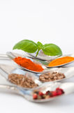 Spice Stock Photography