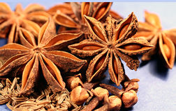 Spice. Still life from aniseed, clove and caraway in macro royalty free stock photography