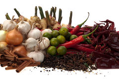 Spice. Combination of Asian Spice and Curry Ingredients Royalty Free Stock Photos