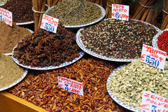 Spice Royalty Free Stock Photo