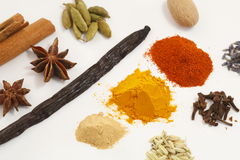 Spice. Collection isolated on white background Royalty Free Stock Photography