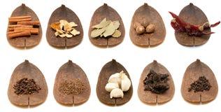 Spice Stock Photos