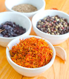 Spice. Aroma spice in white bowls Stock Photography