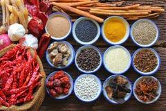 spice Imagem de Stock