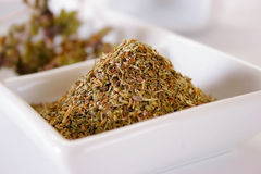 Spice. Gril Royalty Free Stock Images