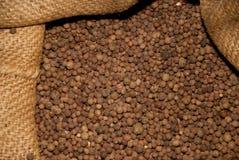Spice. In a storehouse / speicherstadt hamburg Royalty Free Stock Image