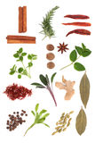 Spice And Herb Selection Royalty Free Stock Images