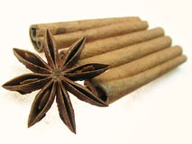 Spice of asia. Pictured is star anise (  Illicium verum), cinnamon bark sticks ( Cinnamomum verum). Favorites of asian in their dishes Stock Image