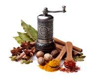 Spice assortiment в деревянной предпосылке изолированной ложкой белой Стоковое Фото