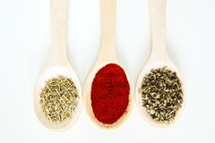 Spice assortment in wooden spoons Stock Photography
