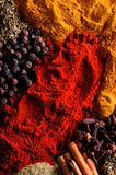 Spice background. With different colored spices Stock Photography