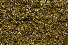 Spice background. Texture of the green spice Royalty Free Stock Photography