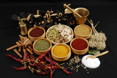 Spice - bark - aroma. Different kinds of spices on black Royalty Free Stock Photo