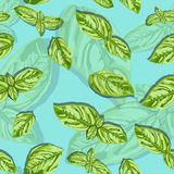 Spice basil leaves seamless pattern on a background. Vector Stock Photo