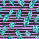 Spice basil leaves seamless pattern on a background. Vector Stock Image