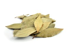 Spice - Bay Leaves. Close up of Bay Leaves on an isolated background Royalty Free Stock Image