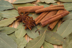 Spice - bay leaves, cinnamon, star anise Royalty Free Stock Photo
