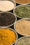Spice bowls Stock Image