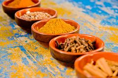 Spice in bowls Royalty Free Stock Images