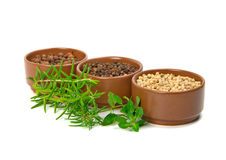 Spice in bowls and herbs Royalty Free Stock Photography