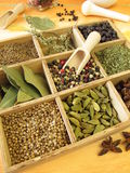 Spice box. With pepper, marjoram, coriander and other spices Royalty Free Stock Photos