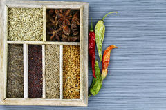 Spice box Royalty Free Stock Photography
