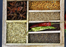 Spice box Royalty Free Stock Photos